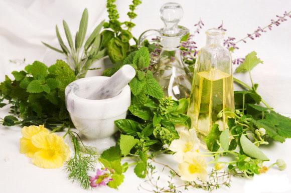 آشنایی با گیاهان دارویی