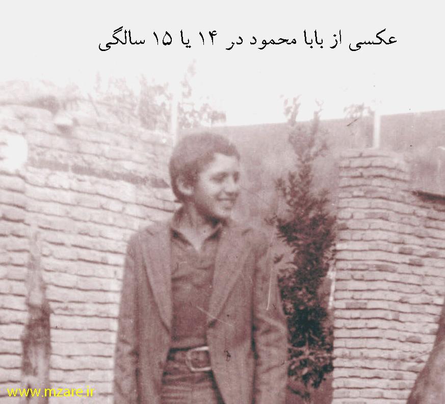 محمود زارع