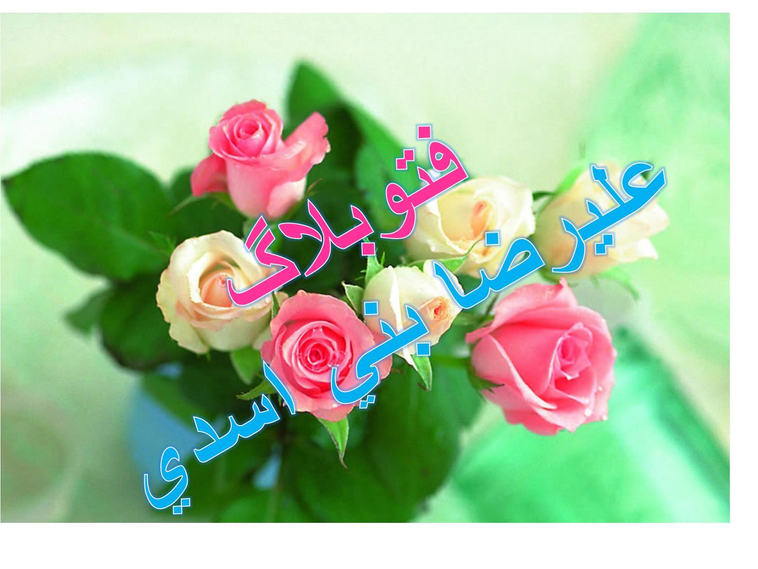 فتوبلاگ عليرضا بني اسدي
