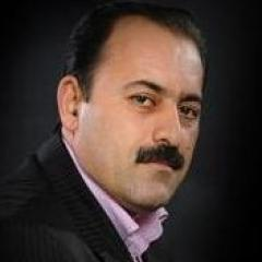 دیدار محمودی