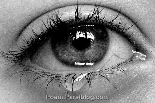 مدیون چشمان توام