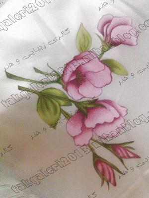 http://s4.picofile.com/file/7798377197/soheila.jpg