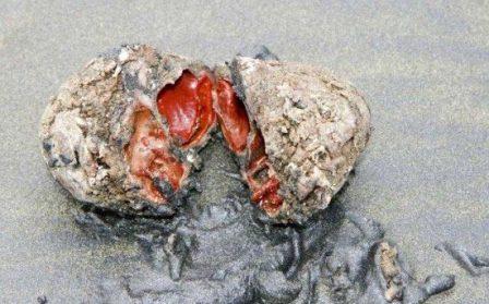 مطالب داغ: عجیب ترین سنگ روی زمین