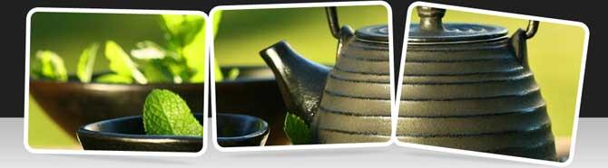 فروش چای لاغری دکتر سینا