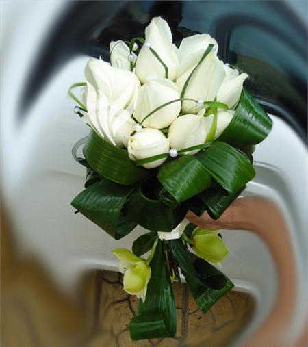 http://s4.picofile.com/file/7865030000/2684_634557380432329844_l.jpg