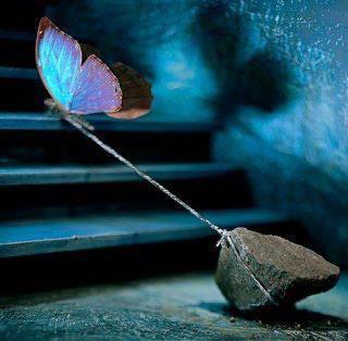 دلم پرواز میخواد