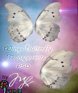 الگو فتوشاپ پروانه