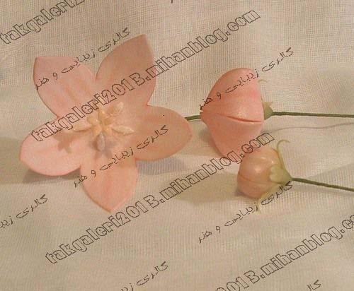 http://s4.picofile.com/file/7898623010/gol_chiniiiiii_3_.jpg