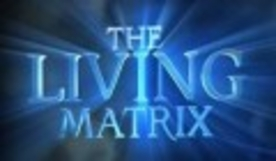 http://s4.picofile.com/file/7945195371/276_living_matrix3.jpg