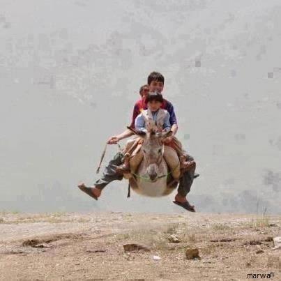 http://funny-photo.blogfa.com/tag/%d8%b9%da%a9%d8%b3-%d9%87%d8%a7%db%8c-%d8%ae%d9%86%d8%af%d9%87-%d8%af%d8%a7%d8%b1