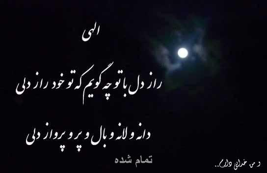 یک شعر در مورد همدلی دوستی از زبان شاعران ایرانی عکس نوشته های غمگین و عاشقانه