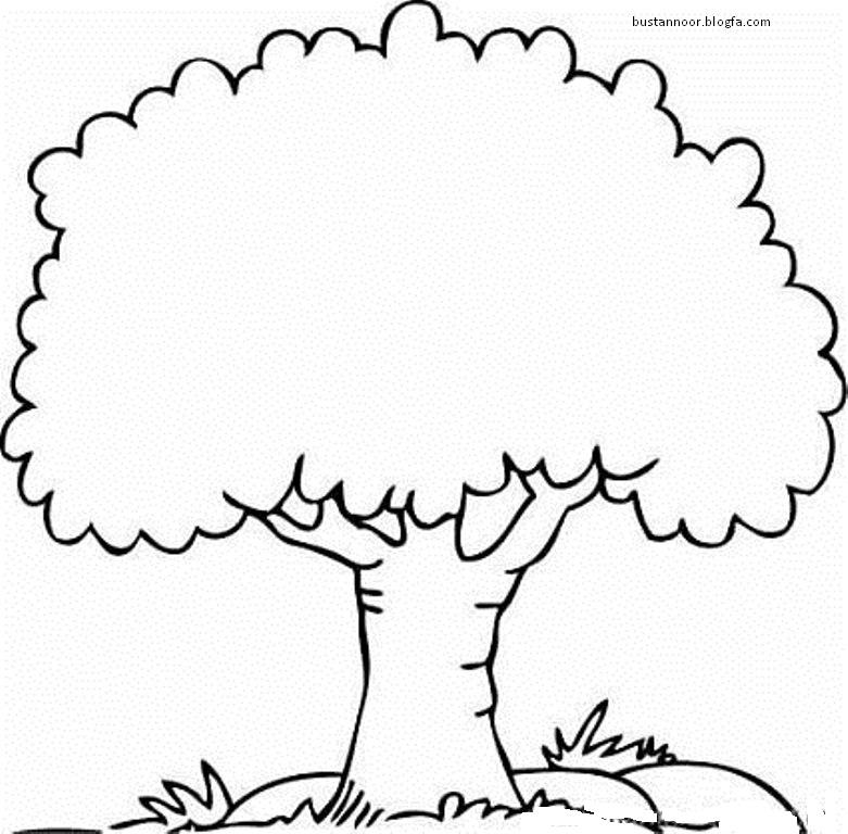 نقاشی درخت نخل بوستان نور - برگه رنگ آمیزی برای کودکان