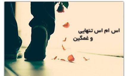 http://s4.picofile.com/file/7966516983/tanhaei.jpg