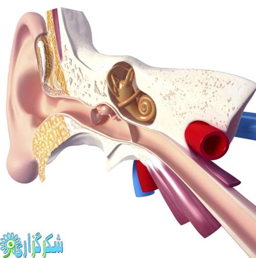 بیماری مینیر گوش درد عفونت گوش گوش داخلی استرس اضطراب