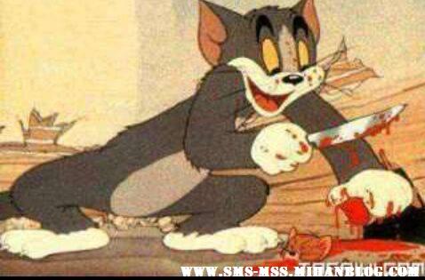 تام و جری،کارتون تام و جری،دانلود کارتون تام و جری،عکس گربه،عکس موش باحال،عکس کشته شدن جری به دست تام،tom and jery،کشته شدن جری،