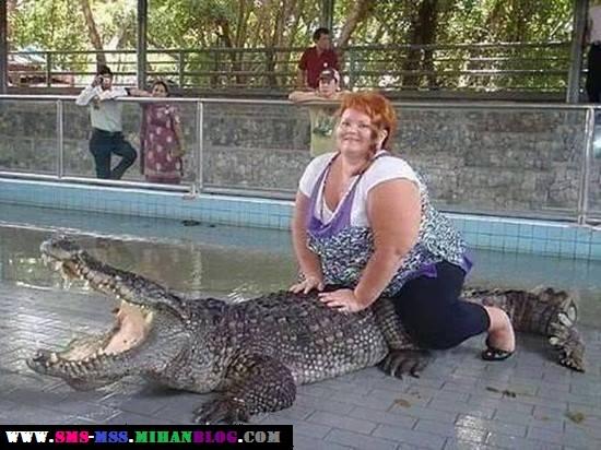 عکس خنده دار،عکس زن سوار بر تمساح،عکس تمساح شکست خورده،عکس ترسناک،عکس طنز،عکس خنده دار تمساح سواری،کتک زدن تمساح توسط زن،زن چاق و شجاع