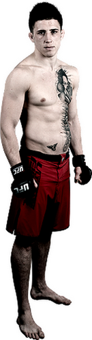 پیش نمایش ))> UFC Fight Night 59 : McGregor vs. Siver <((