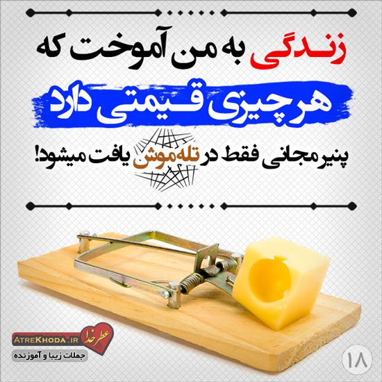 پنیر مجانی و تله موش - جملات زیبا www.atrekhoda.ir