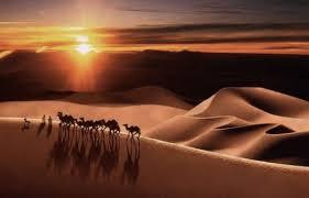 ذکر پرندگان از قول امام حسین ع