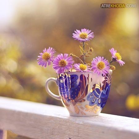 چه زیباست - عطرخدا www.atrekhoda.com