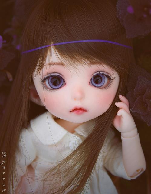 عکس عروسک باربی زیبا، زیباترین عروسک باربی زیبا