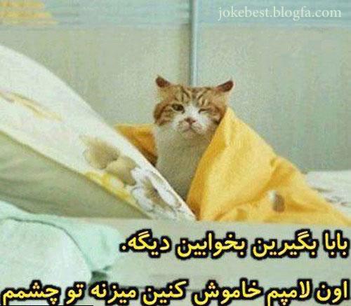 عکس های خنده دار  http://malistanmalistan.blogfa.com/post/100 عکس های طنز،عکس خنده دار جدید