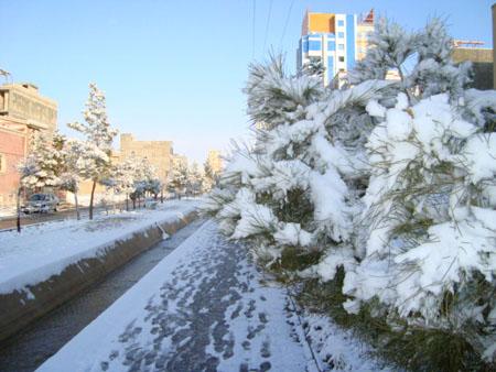 اولین روز اسفند اولین بارش برف زمستانی در دامغان