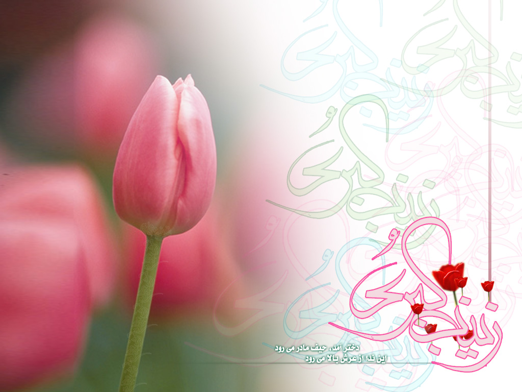 تولید حضرت زینب و روز پرستار