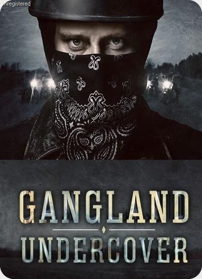 سریال Gangland Undercover فصل 1