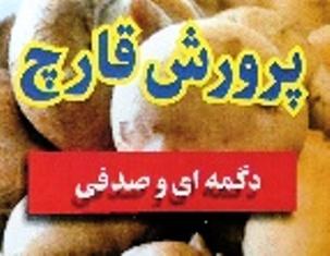آموزش جنبه های اقتصادی قارچ خوراکی در ایران
