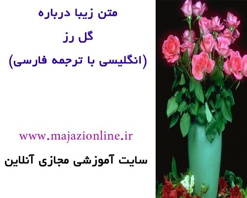 متن زیبا درباره گل رز (انگلیسی با ترجمه فارسی)