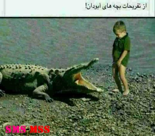 عکس خنده دار،ترول خنده دار آبادانی،شوخی با تمساح،ترول آبادان
