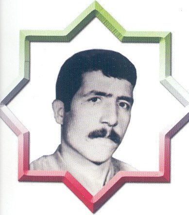 شهید محسن رستمی
