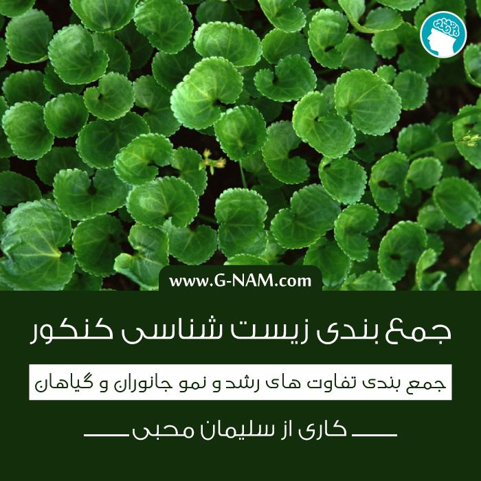 جمع بندی تفاوت های رشد و نمو جانوران و گیاهان برای کنکور ۹۴