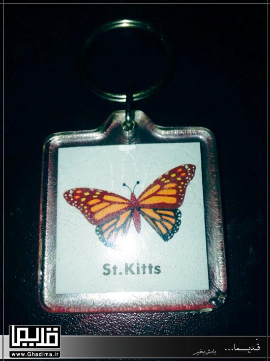 جاکلیدی عکس دار با طرح پروانه