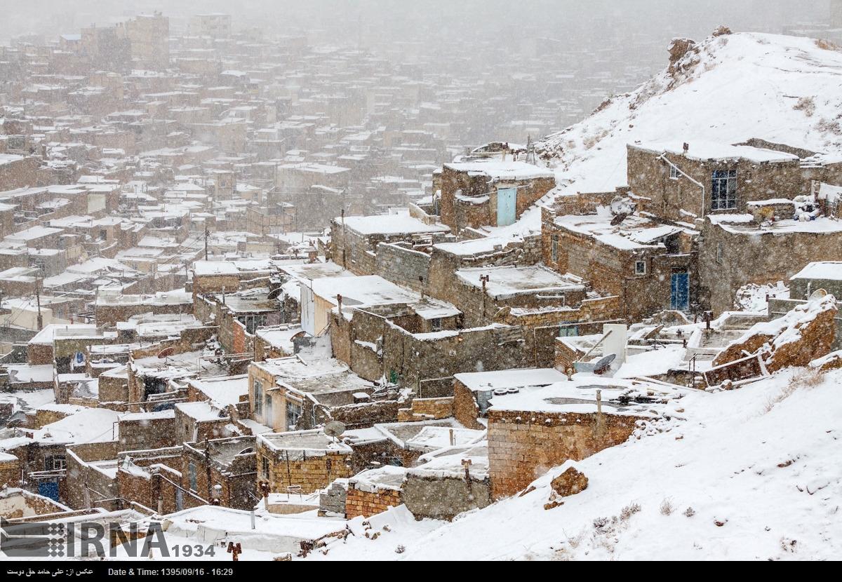 شهرداری منطقه 10 تبریز