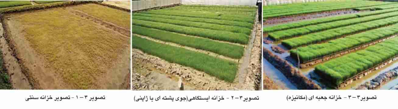 انواع خزانه برنج