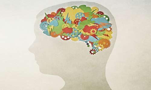 چگونه آی کیو (IQ) خود را بالا ببریم؟