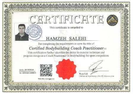 hamzeh salehi body building
