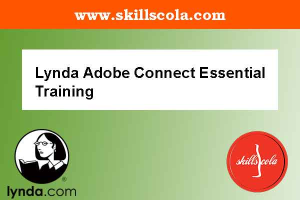 Lynda Adobe Connect Essential Training